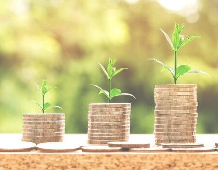 Reddito di cittadinanza ed incentivi per assunzioni